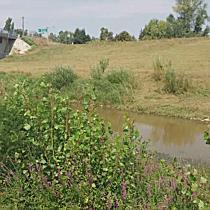 Alacsony a Berettyó folyó vízállása - haon.hu