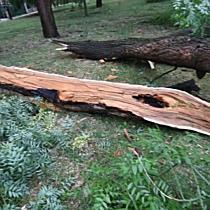 Vihar pusztított Püspökladányban   haon.hu